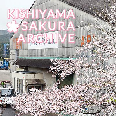 KISHIYAMA SAKURA ARCHIVES