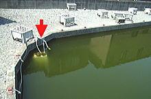 鯉池の酸素溶解装置 FJL-6-SP(旧JTC-6000W)