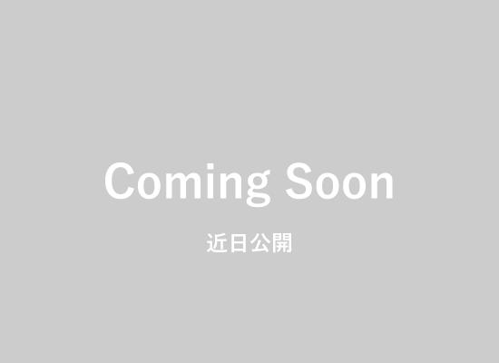 近日公開 機能紹介(3D出来高・出来形プレビュー機能)